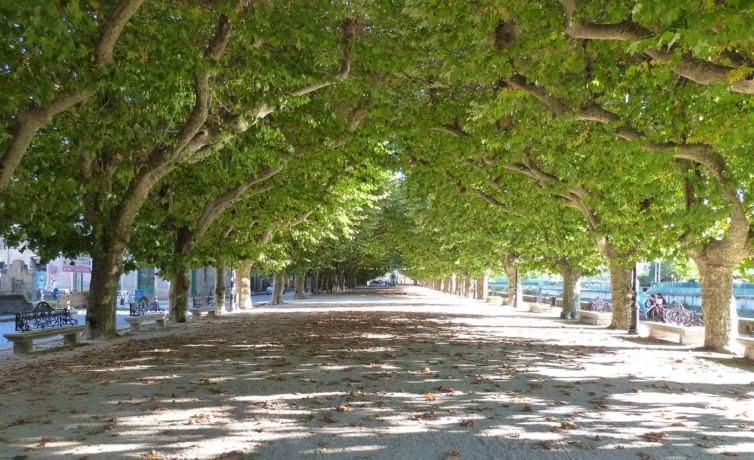 QUEVER-PASEO-ESPOLON